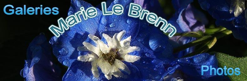 site Marie Le Brenn